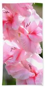 Cotton Candy Gladiolus Beach Towel