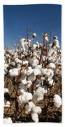 Cotton Fields Beach Towel