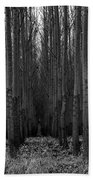 Cottonwood Alley Monochrome Beach Towel