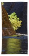 Cottonwood On The Virgin River Beach Towel