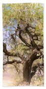 Cottonwood Tree Digital Painting Beach Towel