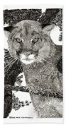 Cougar From Colorado Beach Towel