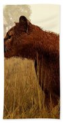 Cougar In A Field Beach Towel by Daniel Eskridge