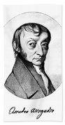 Count Amedeo Avogadro (1776-1856) Beach Towel