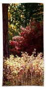 Country Color 28 Beach Towel