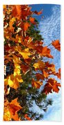 Country Color 30 Beach Towel