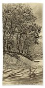 Country Curves And Vultures Sepia          Beach Towel