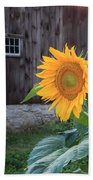 Country Flower Beach Towel