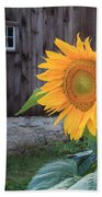 Country Flower Square Beach Sheet