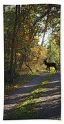 Country Lane Beach Towel