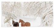 Country Snow Beach Towel
