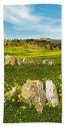 Countryside With Stones Beach Towel
