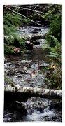 Covell Creek 1 Beach Towel