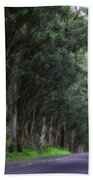 Covered By Trees Beach Towel