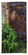 Covered In Rust Beach Towel