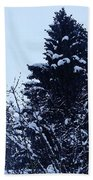 Covered Snow Trees Beach Towel