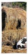Cow Country Buffet Beach Sheet