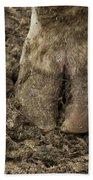Cow Hoof Beach Towel