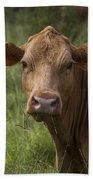 Cow Portrait I Beach Towel