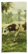 Cows At Pasture  Beach Towel