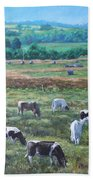 Cows In A Field In The Devon Countryside Beach Towel