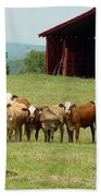 Cows8918 Beach Towel