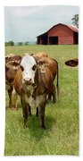 Cows8931 Beach Towel