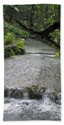 Coyaba River Gardens 6 Beach Towel
