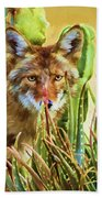 Coyote In The Aloe Beach Towel