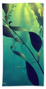 Crab Cathedral Beach Towel
