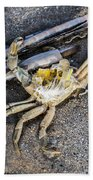 Crab With A Feather Beach Towel