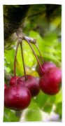 Crabapple Hill Beach Towel