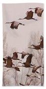 Cranes Across The Sky Beach Towel by Don Schwartz