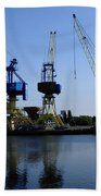 Cranes On The River Bank Beach Towel