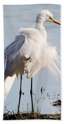 Crazy Egret Feathers Beach Towel