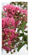Crazy For Crepe Myrtles Beach Towel
