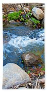 Creek Entering Andreas Canyon In Indian Canyons-ca Beach Towel