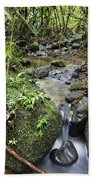 Creek In Mountain Rainforest Costa Rica Beach Towel