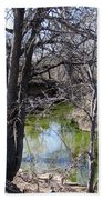Creek In North Texas Beach Towel
