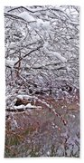 Creekside In The Snow 2 Beach Towel
