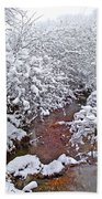 Creekside In The Snow 3 Beach Towel