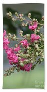 Crepe Myrtle After The Rain Beach Towel