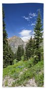 Crested Butte Flowers Beach Towel