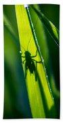 Cricket Silhouette Beach Towel