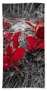 Crimson Foliage Beach Towel
