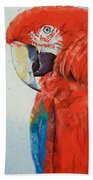 Crimson Macaw Beach Towel