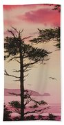 Crimson Sunset Splendor Beach Towel by James Williamson