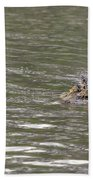 Crocodile   #0579 Beach Towel