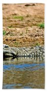 Crocodile In Watering Hole In Kruger National Park-south Africa Beach Towel
