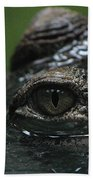 Croc's Eye-1 Beach Towel